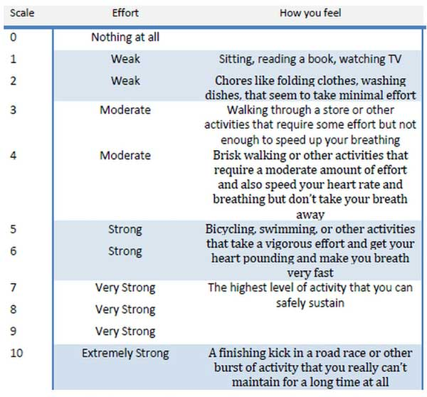 Elderly And Senior Endurance Exercises Improve Your Heart ...